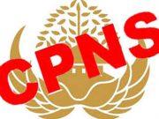 Pemerintah membuka pendaftaran CPNS hingga tiga minggu. mengundurkan pendaftaran CPNS.