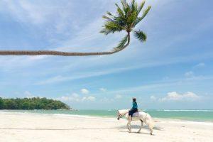 Mulai besok Kamis tanggal 14 Oktober 2021, turis asing sudah boleh masuk Indonesia.